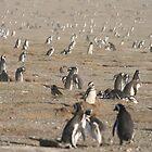 Penguin farming by mangofantasy
