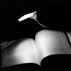 Reading Light by Maxie Antinone