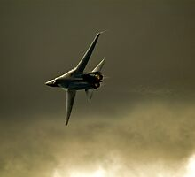 F-111  Aardvark by aircraft-photos