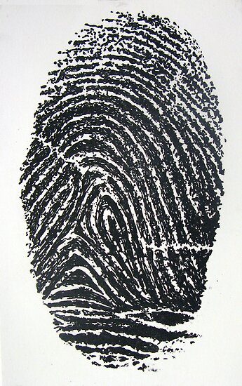 Fingerprint by Chris Richards
