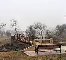 The Bridge by WILDBRIMOWILDMAN