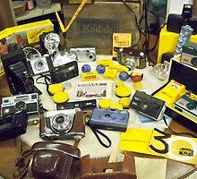 Vintage KODAK Collection by Diane Trummer Sullivan