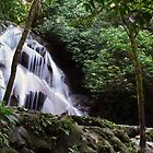 Queen Pools in Palenque by aguakina