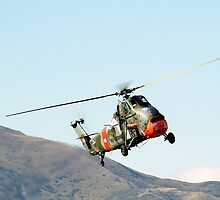 Westland  Wessex  Helicopter by aircraft-photos