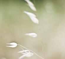 Whisper by Caroline Gorka