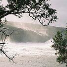 storm by ben reid