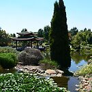 Chinese Garden section Hunter Valley Gardens!!! by Heabar