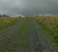 walking to west Lomond hill, Fife, Scotland by weecoughimages