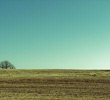 wisconsin horizon by josh haroldson