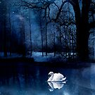 Swan Lake by phatpuppy