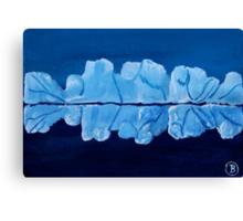 Impression - Greenland ice Canvas Print
