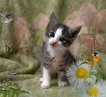 A Kittens Dream by Elaine  Manley