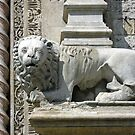 Carved lion guarding the entrance to the Palazzo dei Priori, Perugia, Italy by Philip Mitchell