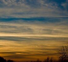 Sunset at Durand Eastman Park by Rachel Blumenthal