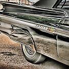 Black Impala Fins by Robert Beck