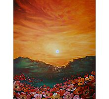 Poppy Field Sunset Photographic Print