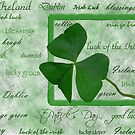 Irish Heritage by Maria Dryfhout