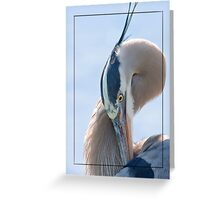 Such a Sad Blue Heron Greeting Card
