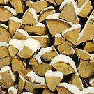 Winter Woodpile by John Ayo