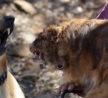 Sibling Rivalry by TxGimGim