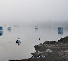 'Morning Fog in the Bay' by Ian Berry