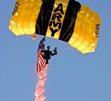 American Pride by Larry Powell