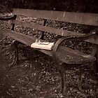 Bench by John Shingler