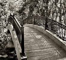 Park Bridge by Stephen  Van Tuyl