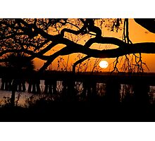 Sunset through the Branches Photographic Print