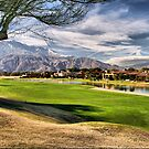 Mission Hills Country Club by Jo Nijenhuis