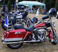 Harleys by Alexander Mcrobbie-Munro