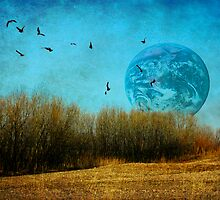 Earth and the Earth by photo36