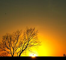 Sunset by photo36