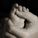 Little Hands by abfabphoto