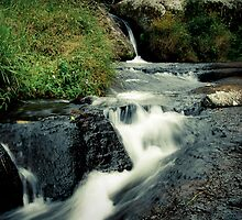 Waterfall, Zomba Plateau, Malawi by Tim Cowley