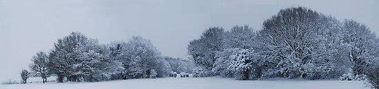 Winter scene by Gwyn Lockett