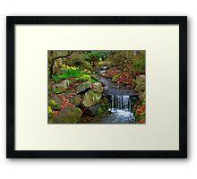 Spring in Beacon Hill Park Framed Print