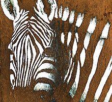 zebra by Gunter Wenzel