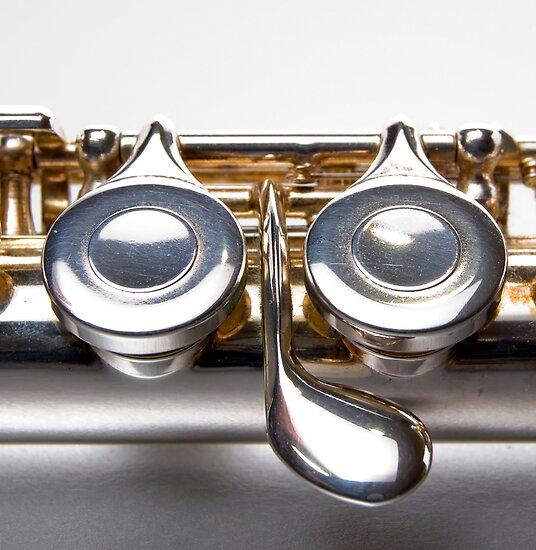 Flute Keys by Nigel Bangert