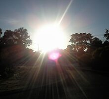 The Sun Shining Away Whilst Walking To School. by m004