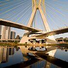 Estaiada Bridge - Sao Paulo by WLphotography