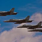 Super Hornet in Formation by dragongizmo