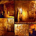 Naracoorte Caves by Clive