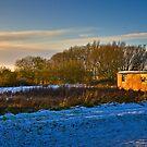 Late winter sun by SaltGeorge