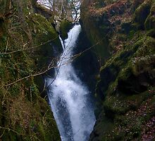 Aira Force by shakey