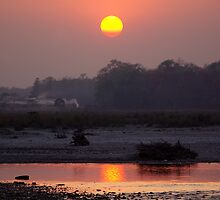 Sunset over Manas River, Assam, India. by John Mitchell