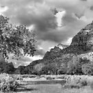 Zion Canyon Afternoon by Stephen Vecchiotti