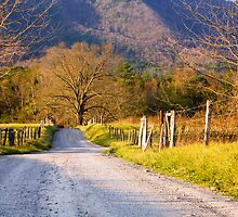 Great Smoky Mountains by Susan Gottberg