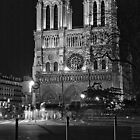 Notre Dame by MNDustyLens