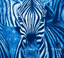 Zebra by Gunter Wenzel
